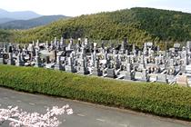 自由普通墓地