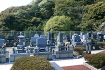 セット規格墓地